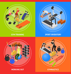 interior gym with exercise and gymnastic equipment vector image vector image
