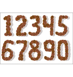 Coffee bean numbers vector
