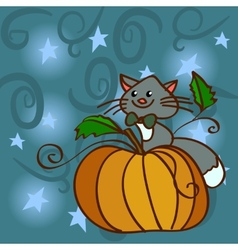Cat on a pumpkin at the night sky with stars vector image vector image