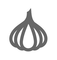 garlic outline icon vegetable vector image vector image