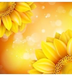 Macro SunFlower Background EPS 10 vector image vector image