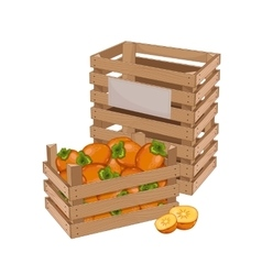 Wooden box full of persimmon isolated vector