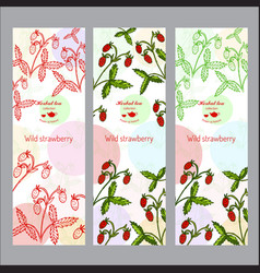 herbal tea collection wild strawberry banner set vector image vector image