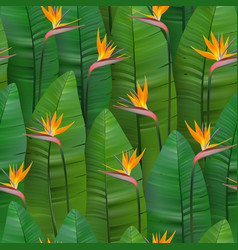 Seamless tropical pattern with strelitzia vector