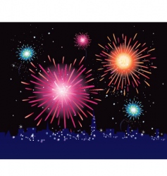 fireworks display in the city vector image