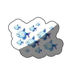 Sticker colorful set collection fish aquatic vector