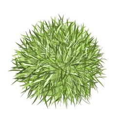 Grass frame green for your design vector