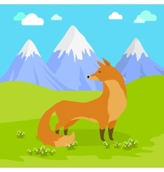 Red Fox Standing on the Meadow in the Mountains vector image