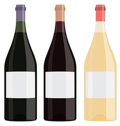 Different flavor bottles of wine with blank label vector
