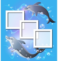 Dolphin Frames Background vector image vector image