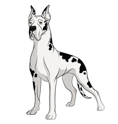 Drawing of dog isolated object vector
