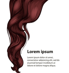 Hair style and hair care design template vector image vector image