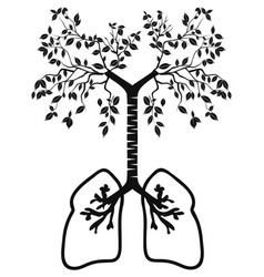 lung tree vector image vector image
