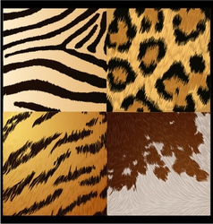 Wild animals skin textures vector