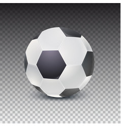 realistic soccer ball with shadow isolated on vector image vector image
