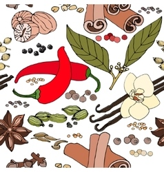 Seamless color pattern of spice and herbs vector