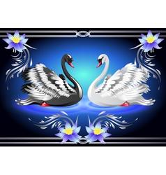 Swan lake vector