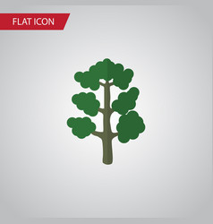 Isolated wood flat icon forest element can vector