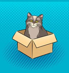 cat in box pop art vector image vector image