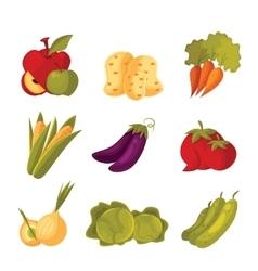 Set of green vegetable farm garden stuff vector