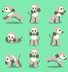 Cartoon character afghan hound dog poses set vector