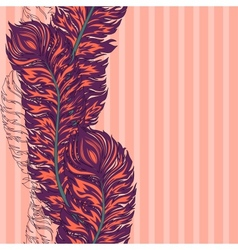 colorful feather border vector image