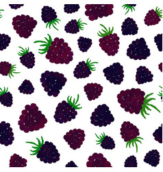 Blueberry background painted pattern vector