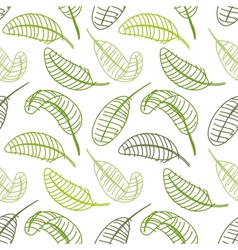 Green leaf seamless pattern for your design vector image