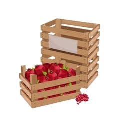 Wooden box full of pomegranate isolated vector