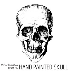 T-shirt graphics - sketched skull vector