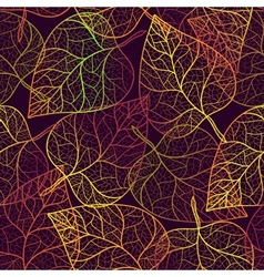Autumn transparent leaves pattern background vector image vector image