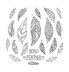 Set of hand drawn monochrome feathers isolated on vector image vector image