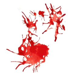 Spots of red paint watercolor on white background vector image