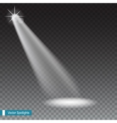 Beams from the spotlights vector