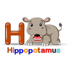 animals alphabet h is for hippo vector image