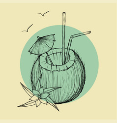 Exotic coconut cocktail sketch vector