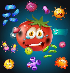 Fresh tomato with bacteria vector
