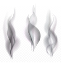 Smoke waves transparent vector image