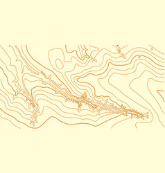 Abstract topographic map in brown colors vector
