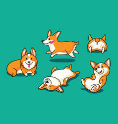 collection of cute cartoon dogs breed welsh corgi vector image