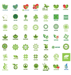 Biggest collection of logos eco and nature vector