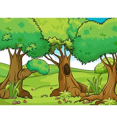 Big trees vector image vector image