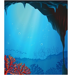 Corals inside the seacave vector