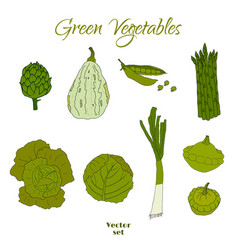 hand drawn doodle green vegetables icons isolated vector image vector image