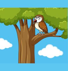Owl standing on branch vector