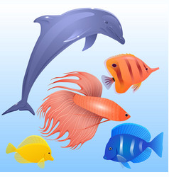 Set of tropical fish dolphins and fish-rooster vector