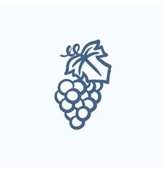 Grape sketch icon vector