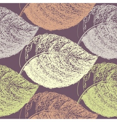 Autumn hand drawn leaf vector image vector image