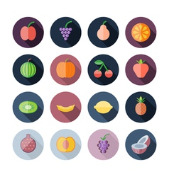 Flat design icons for fruits vector