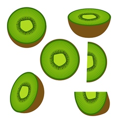 Kiwi fruit and his sliced segments isolated vector